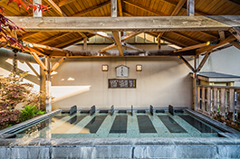 船橋温泉 湯楽の里1